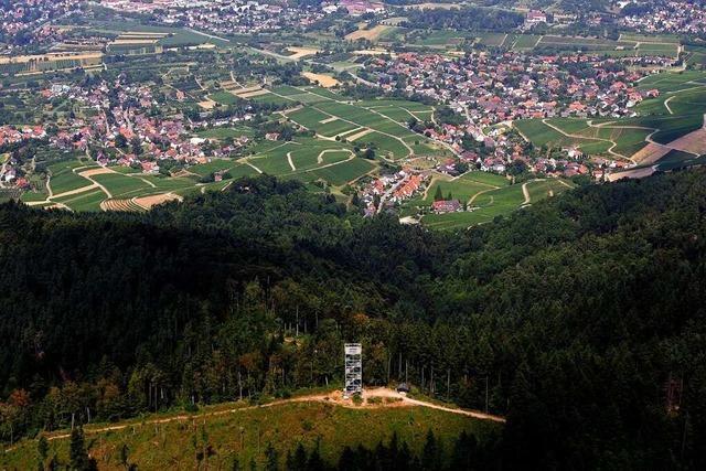 40 Jahre neuer Hohes-Horn-Turm: Eine Stahlkonstruktion für den großen Überblick