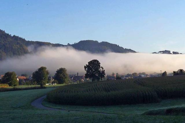 Nebel in Niederwinden