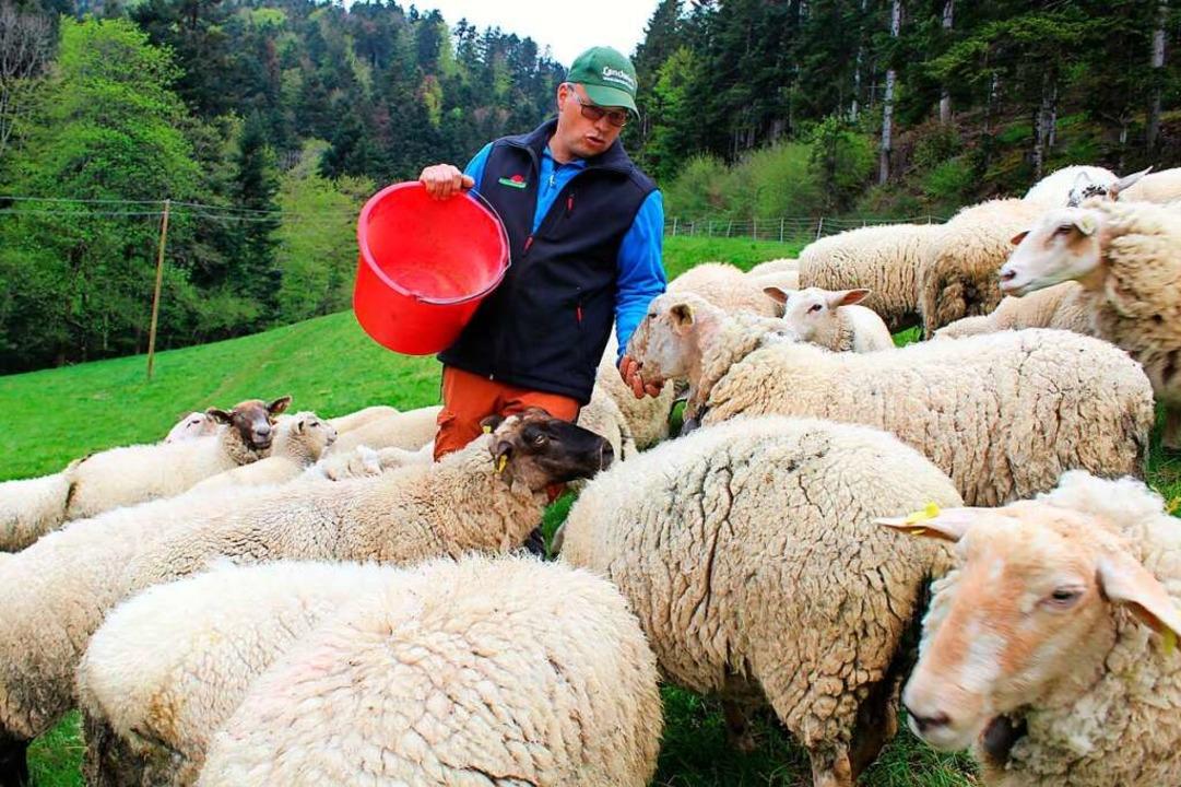Der Stegener Landwirt Bernhard Rombach fürchtet hohe Kosten.  | Foto: Erich Krieger