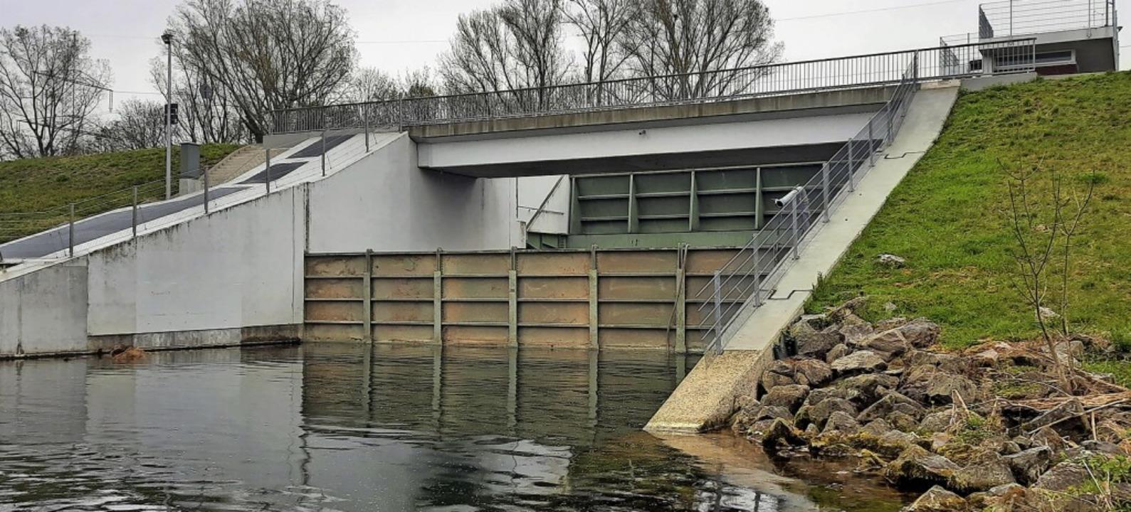 Am Möhlinwehr wurde ein provisorischer Verschluss eingebaut.  | Foto: Regierungspräsidium Freiburg