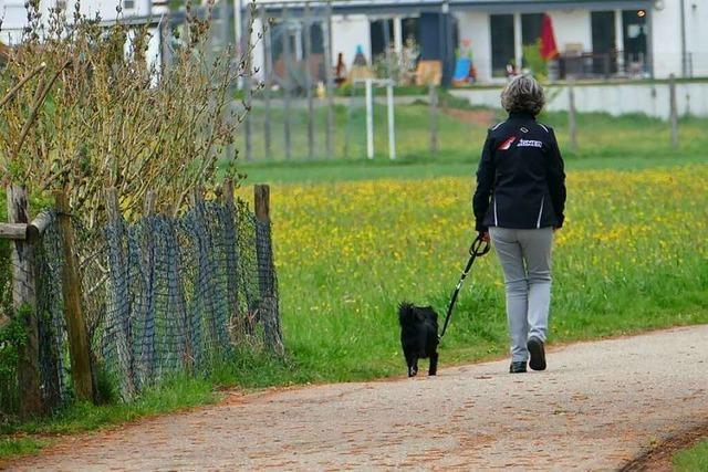 Hundekot auf Feldern ist nicht nur unappetitlich
