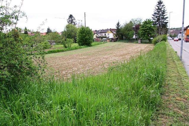Bebauungsplan schafft Grundlage für Gemeindehaus der Liebenzeller Gemeinschaft