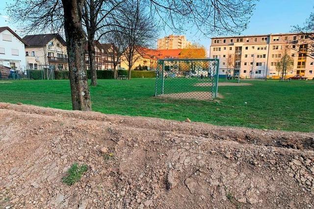 Der Bolzplatz am Schopfheimer Wiesenweg bekommt eine schützende Hecke