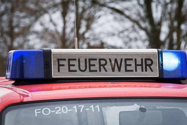 Bad Bellingen: Baum fällt auf zwei Fahrzeuge