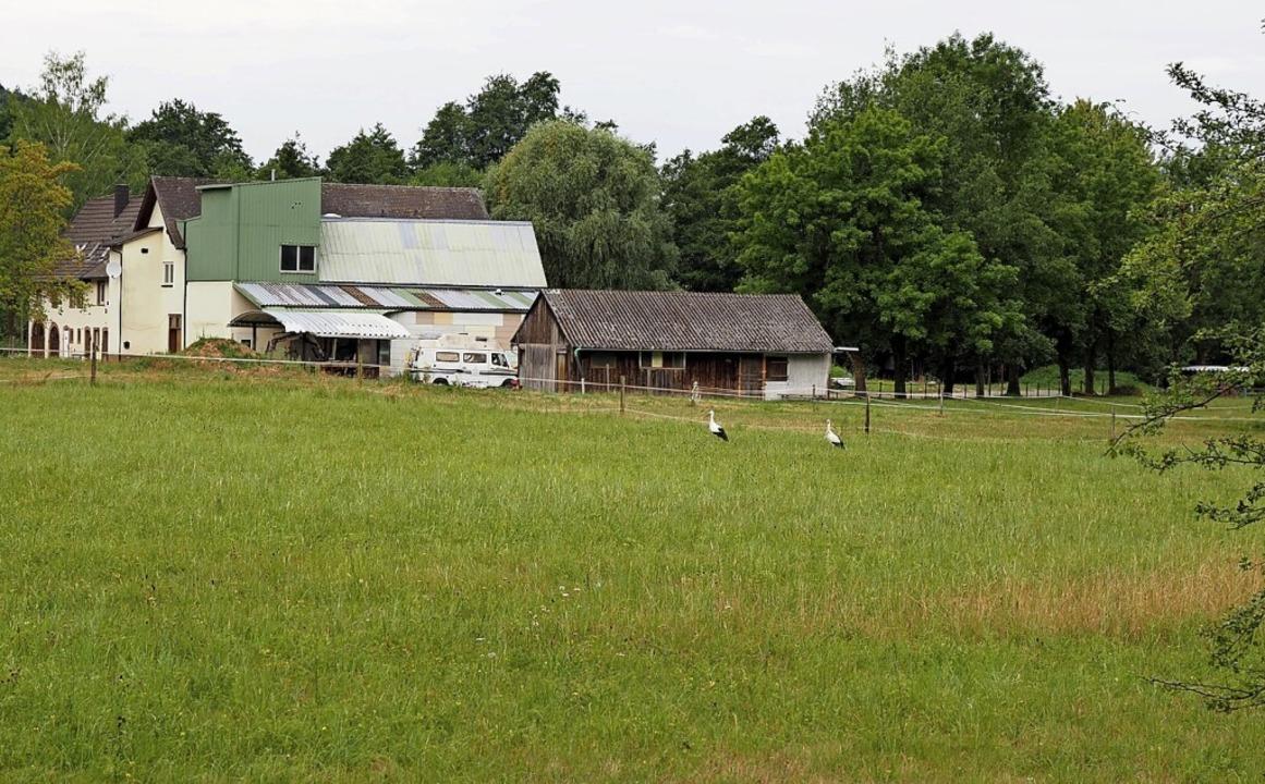 Die Änderung des Flächennutzungsplans ...-Mühle in Bleichheim ist beschlossen.     Foto: Michael Haberer