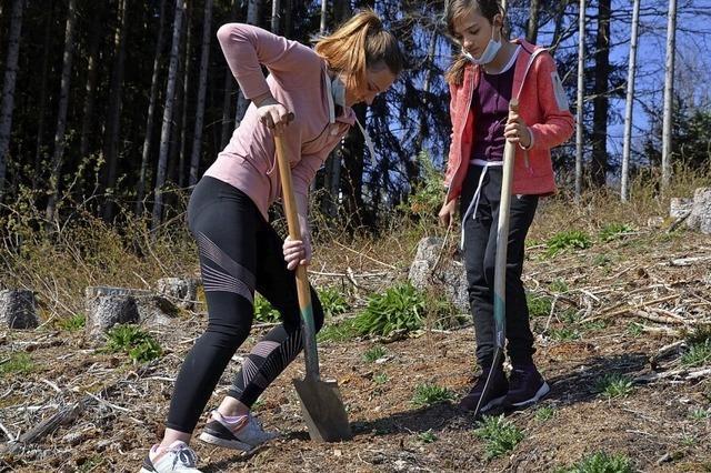 Naturschutz fängt mit Löchergraben an