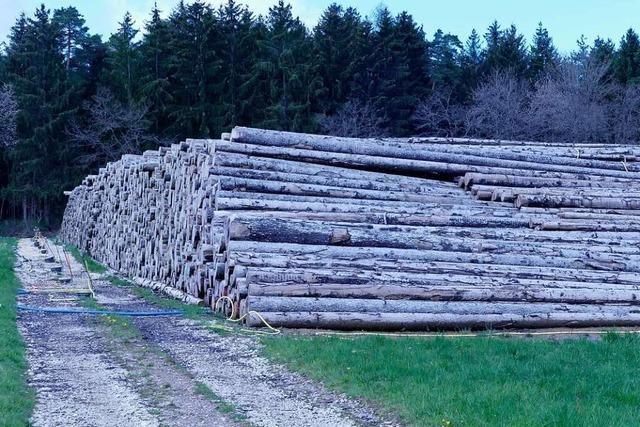 Frischholzpreis steigt wieder