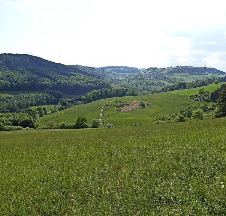 Wertvolle Lebensräume im FFH-Gebiet &#... und Kalkmagerrasen bei Schwaningen.      Foto: Regierungspräsidium