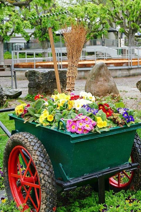 Der Blumenschmuck in der Stadt ist ein...te sparen. Aber dann würde was fehlen.  | Foto: Verena Pichler
