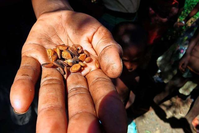 Die weltweite Hungerkrise gerät aus dem Blick
