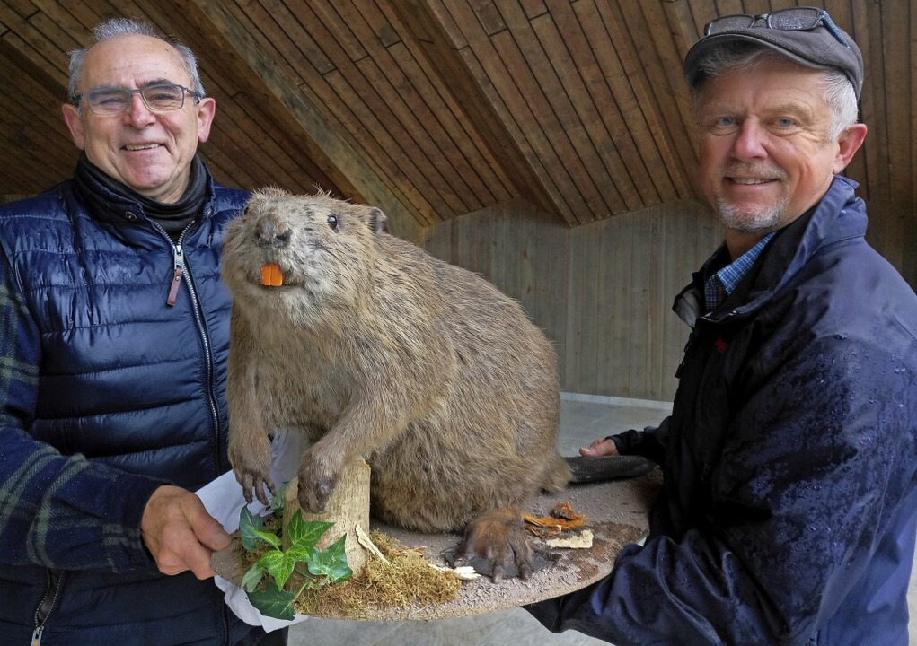 Biberbeauftragter Edwin Roth und Biolo...r – er wurde Opfer des Verkehrs.  | Foto: Katja Rußhardt