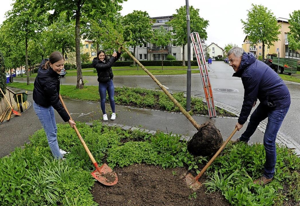 Die Schülerinnen Amélie Gräßle (links)...Szabados eine Baumhasel in Denzlingen.    Foto: Markus Zimmermann