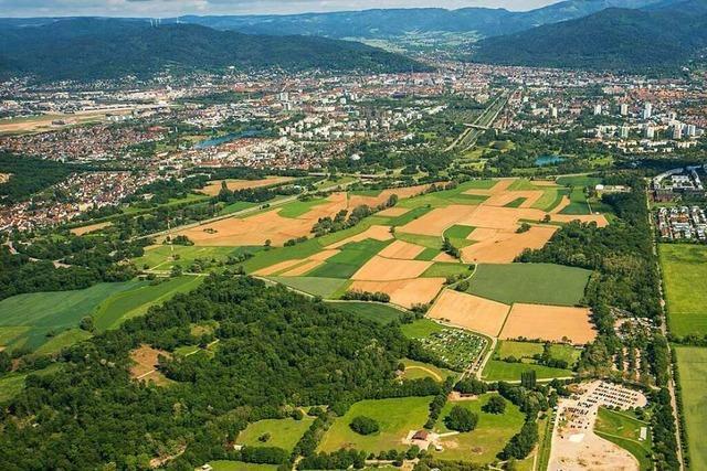Am Montag beginnen Arbeiten für neues Freiburger Erdaushublager