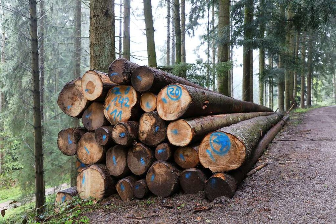 Holzstapel im Schuttertal  | Foto: Christoph Breithaupt