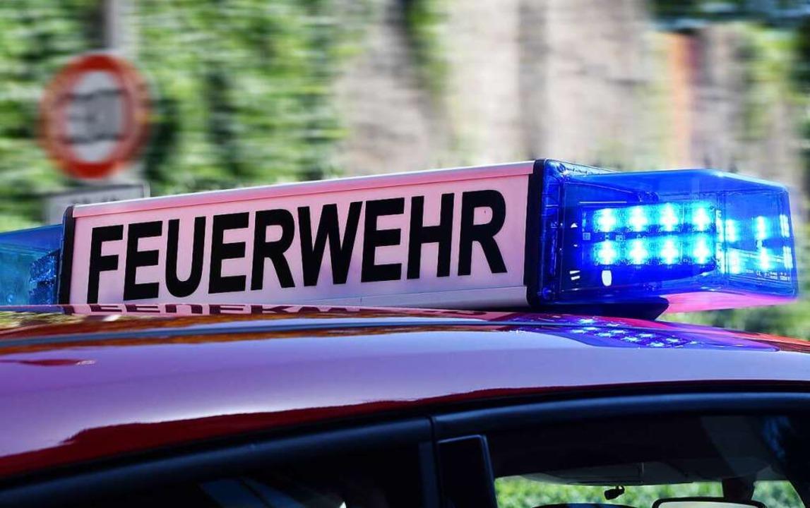Rund 60 Feuerwehrkräfte waren im Einsatz.  | Foto: Rita Eggstein