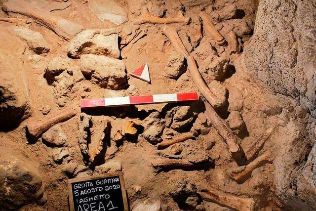 Spektakuläre Neandertaler-Funde in Höhle in Italien
