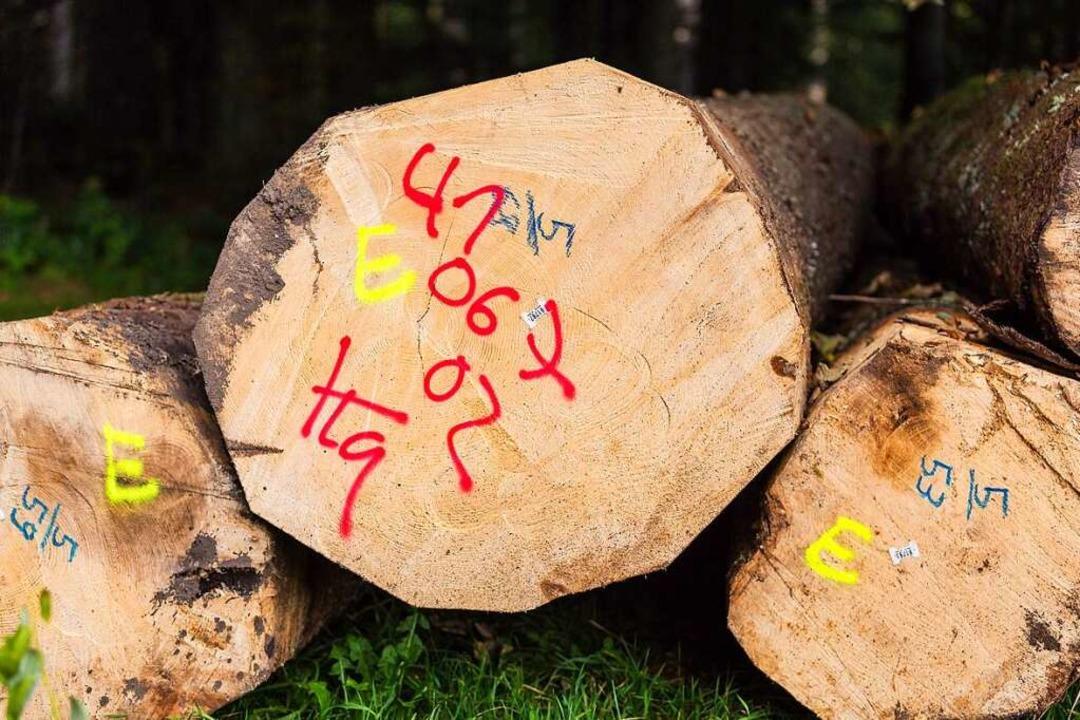 Die Holzpreise sind in die Höhe geschnellt.  | Foto: Carlotta Huber