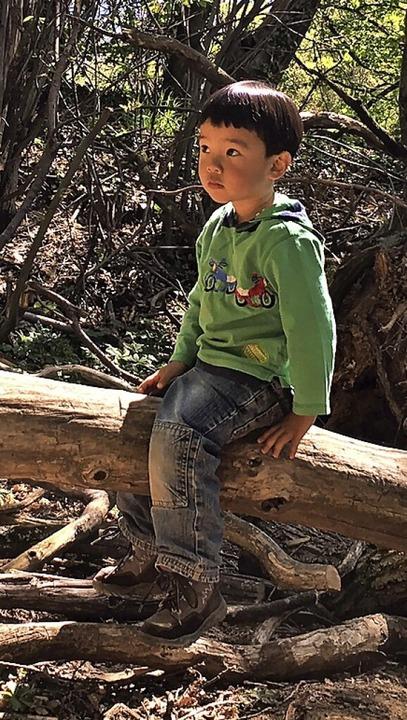 Lucas Sanha Holzapfel besucht einen Denzlinger Waldkindergarten.  | Foto: Privat