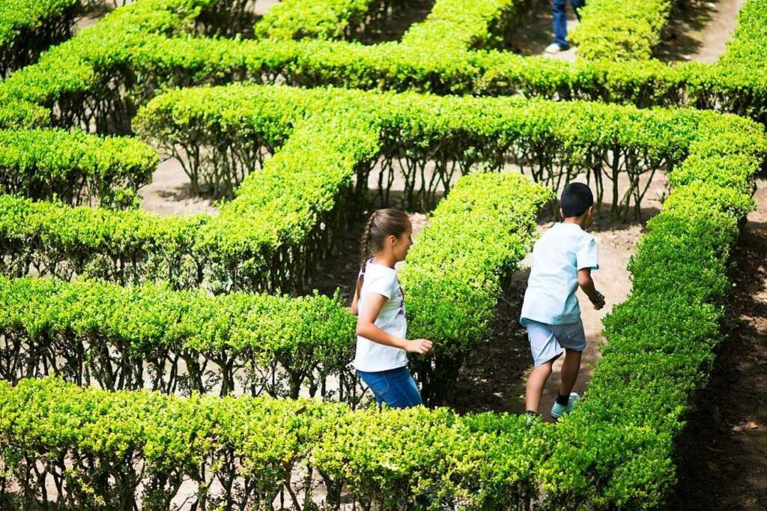 Zwei Kinder laufen durch ein Labyrinth.  | Foto: Herjua  (stock.adobe.com)