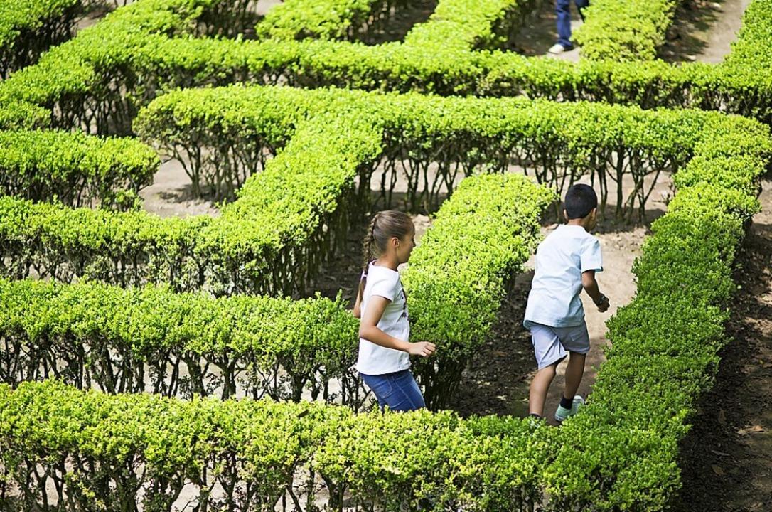 Zwei Kinder laufen durch ein Labyrinth.  | Foto: Herjua - stock.adobe.com