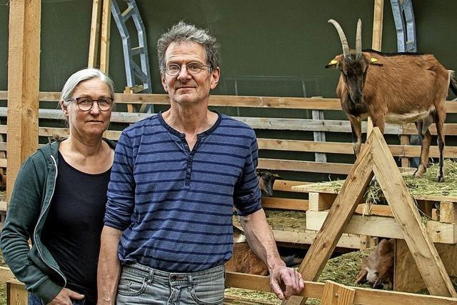 Zukunft mit Ziegen