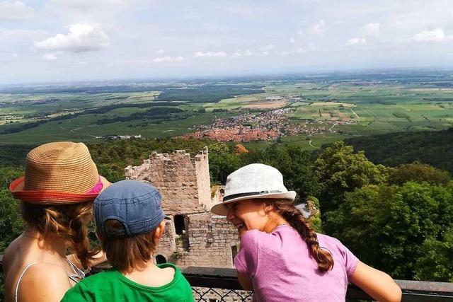 Eine steile Familientour zur Burg Bernstein hoch über Dambach-La-Ville