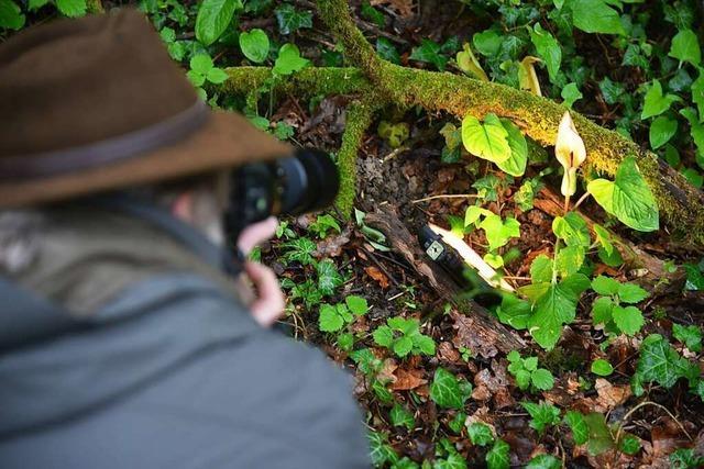 Wie der Emmendinger Fotograf Paul Trenkle die BZ-Leser begeistert