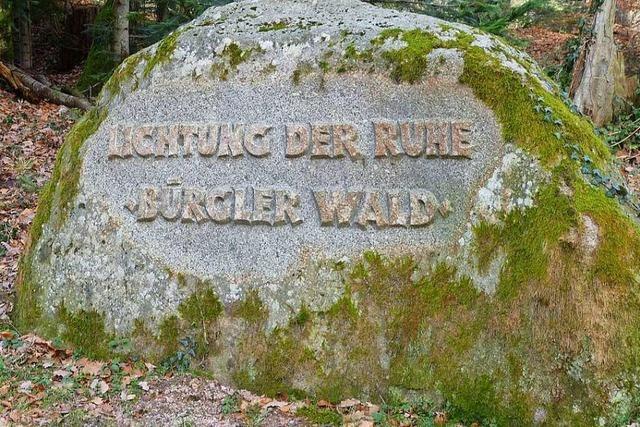 Fläche für Schliengener Bestattungswald vervierfacht sich