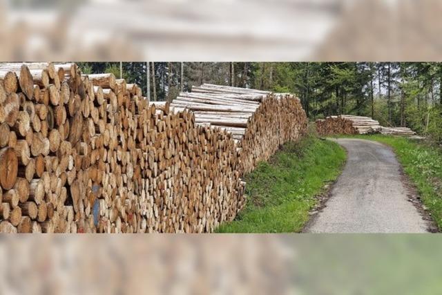 Steigender Holzpreis bereitet massiv Kopfzerbrechen