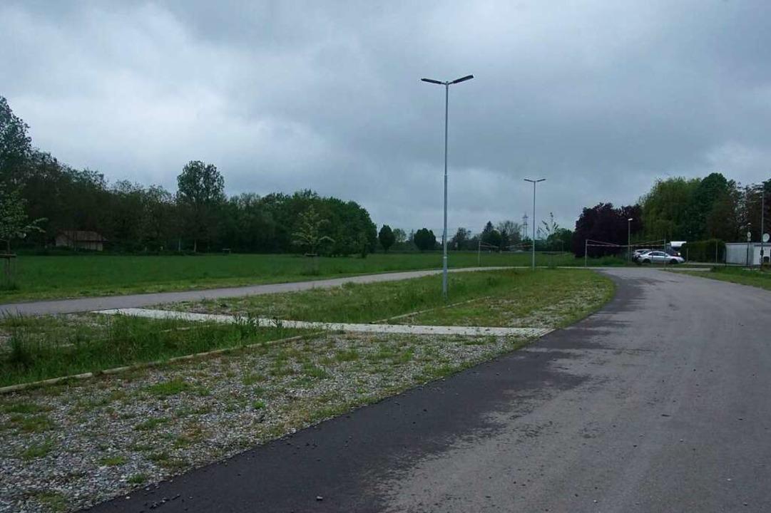 Auf der grünen Wiese im Anschluss an d...der Stellplatz für Wohnmobile geplant.    Foto: Ilona Huege