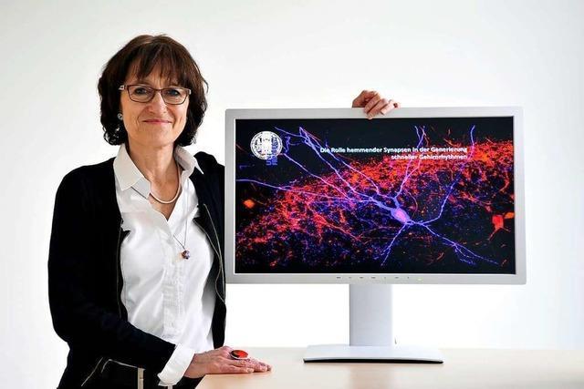 Die Neurowissenschaftlerin Marlene Bartos ergründet, wie unser Gedächtnis lernt