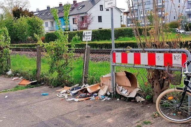 Wildwuchs und wilde Müllkippe sind am Lörracher Zollweg entstanden