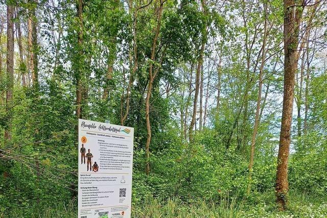 In Rheinfelden/Schweiz gibt es nun einen Achtsamkeitspfad