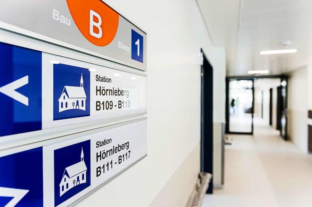 Derzeit kurz vor der Fertigstellung st...nen Hörnleberg (Foto)  und Silberberg.    Foto: Daniel Schoenen
