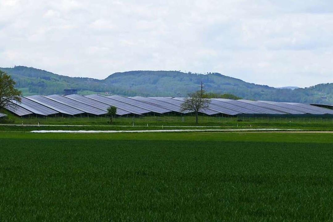 Früher Deponie, heute Solarpark  | Foto: Dora Schöls