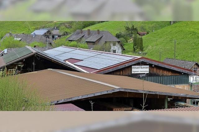 Sägewerk produziert Holz und Strom