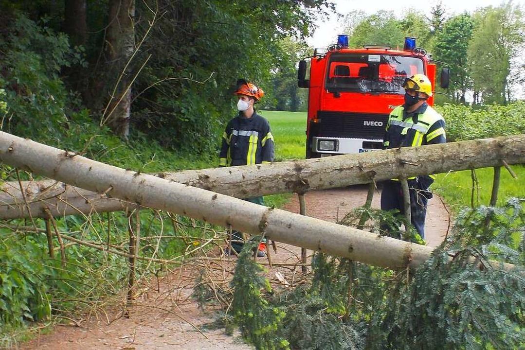 Die Denzlinger Wehr war am Vatertag im Einsatz.  | Foto: Feuerwehr Denzlingen - Stephan Konrad