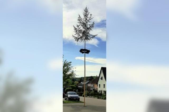 Eichener Maibaum