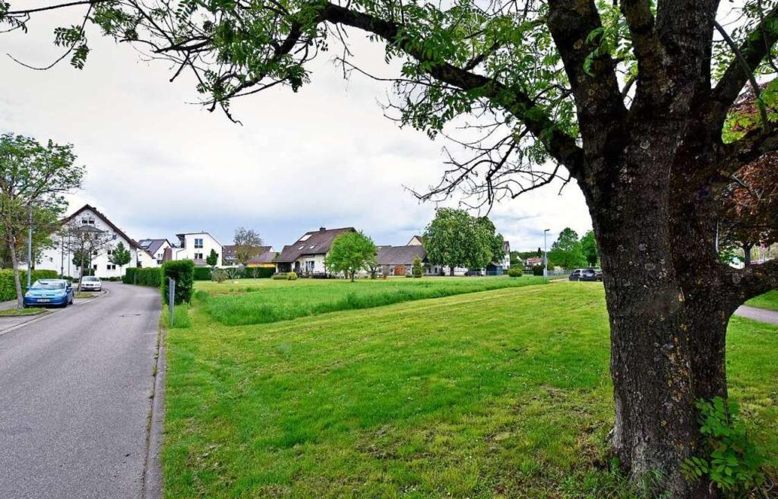 Der Ortschaftsrat stemmt sich gegen di... für dieses  Areal am Ortseingang hat.  | Foto: Michael Bamberger