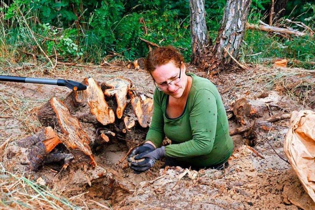 Manchmal steht Christina Grätz bis zur...h, um allen Ameisen habhaft zu werden.  | Foto: Andrea Grasser