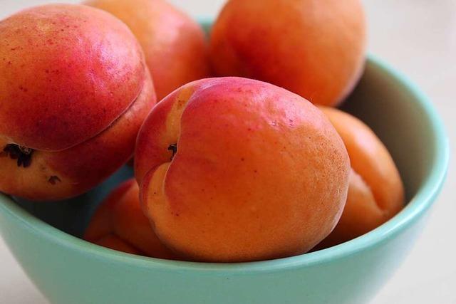 Dieses Jahr wird es keine Aprikosen aus dem Kreis Lörrach geben