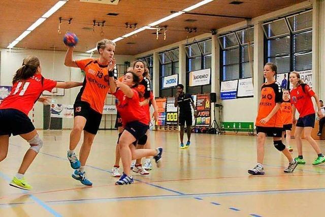 Der Rheinfelder Stadtsportausschuss fordert, die Hallen wieder zu öffnen