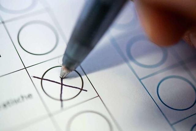 1100 Unterschriften für Bürgerentscheid zur Badwiese