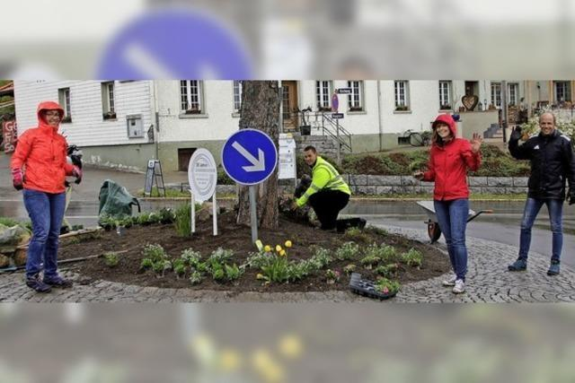 500 Pflanzen verschönern den Dorfplatz