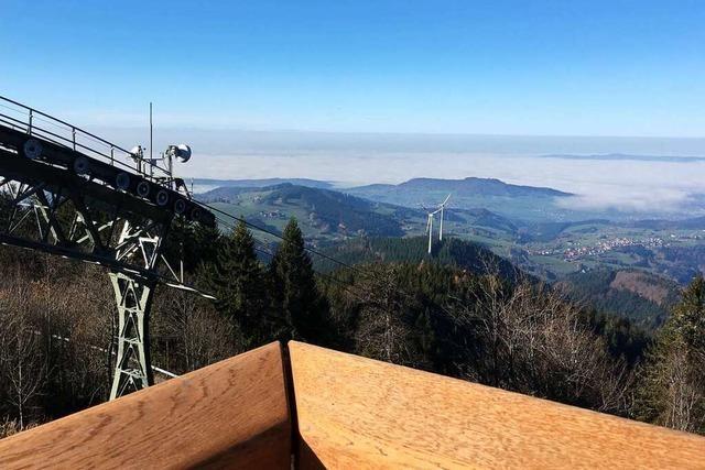 Baumhäuser und Aussichtsterrassen locken jetzt auf den Schauinsland