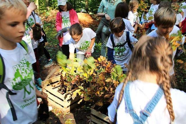 Von der Umwelt lernen – in der Eschbacher Naturpark-Schule