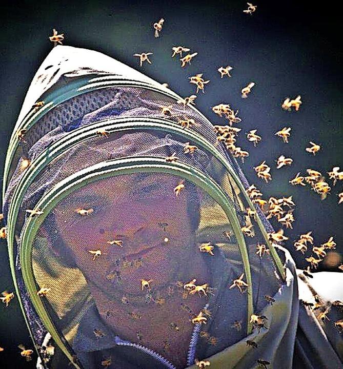 Imker Sebastian Herb aus Holzschlag inmitten seiner fleißigen Bienen.   | Foto: Wolfgang Scheu