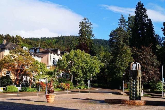 Badenweiler will seine Baumschutzsatzung abschaffen