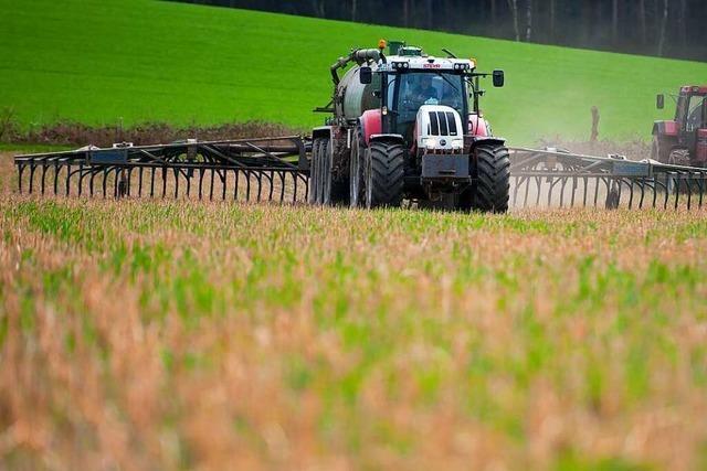 Warum ist zu viel Nitrat schädlich?