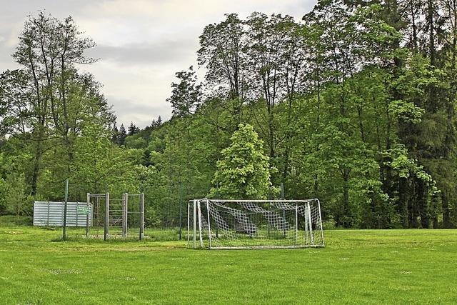 FC will mit Kunstrasenplatz Ernst machen